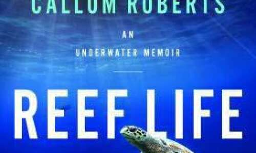 Reef Life: An Underwater Memoir review: dazzling beauty and serious…