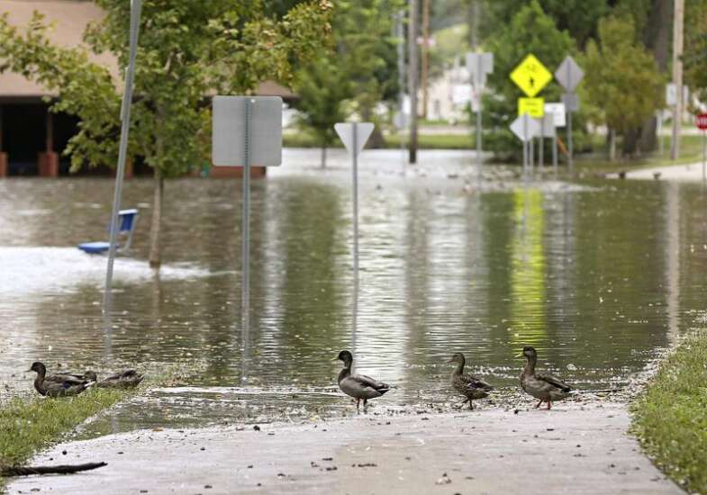 Council backs tax increases, bonding plan for permanent flood protection for Cedar Rapids