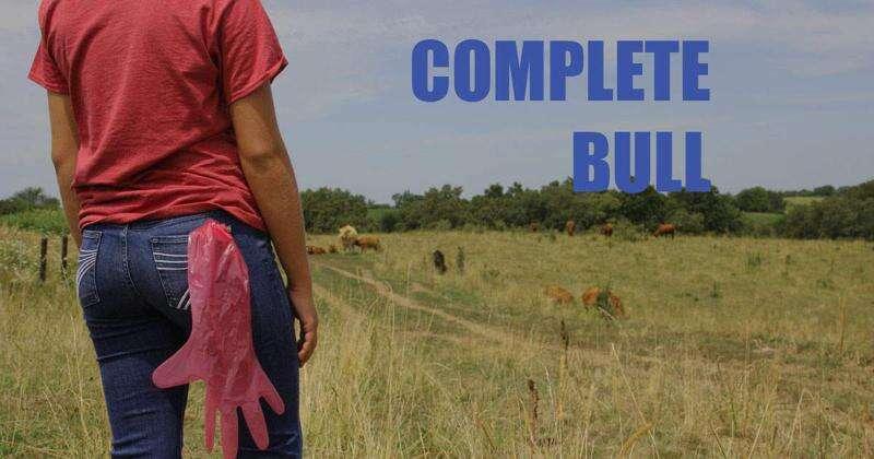 No bull, Iowa-based TV drama to feature cattle insemination