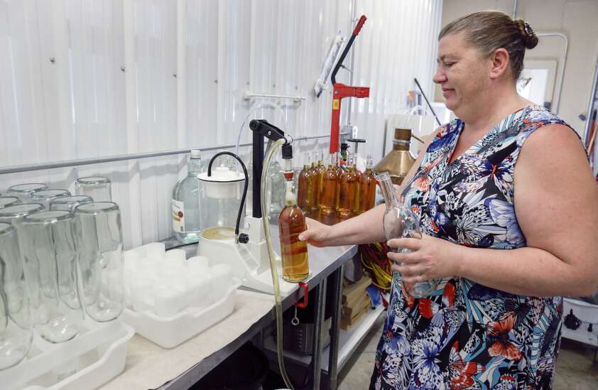Cherry Meadow Winery in Marion wants to be the place for semi-sweet fruit wine
