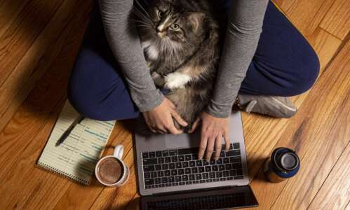 8 months of working from home take toll on employees,…