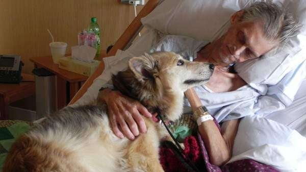 A dying wish granted: Homeless man reunited with his dog in Cedar Rapids