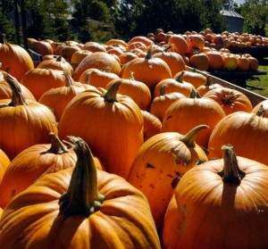 Pumpkinfest in the Amana Colonies is this weekend