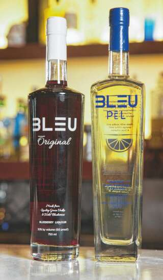 Sipping to success: Bleu Vodka founder created her own path