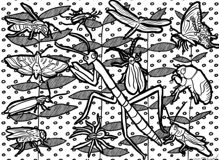 Buggin' out: Color these bugs