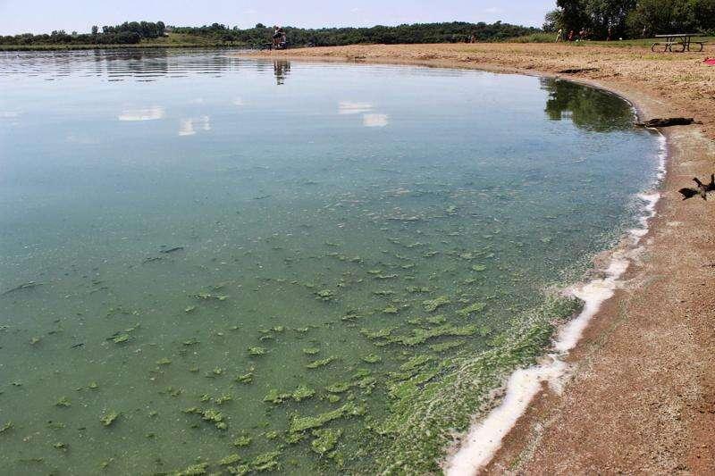 Fish kill at Hancock County lake marks start of algae season