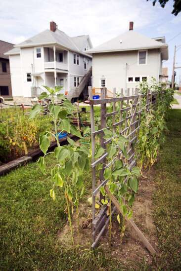 After city forced him to abandon his garden, Cedar Rapids man growing again