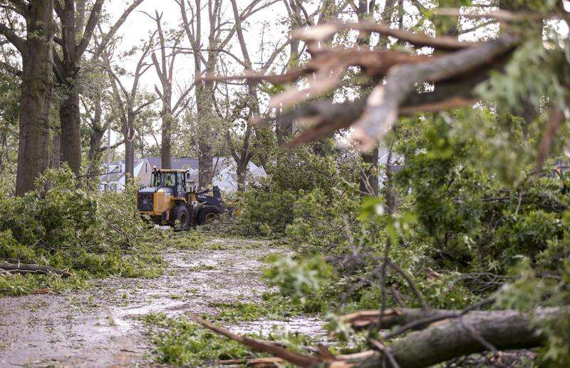 The derecho's calling card, a tangle of trees