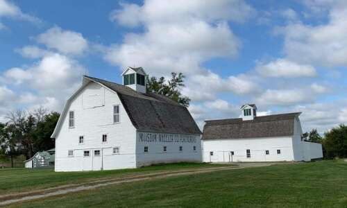 Leathers proud of what Maasdam Barns has become