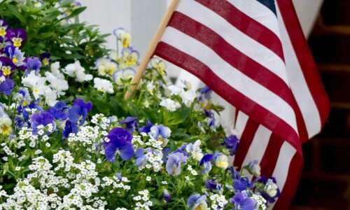 Show 'Old Glory' colors in a 2020 spirit garden