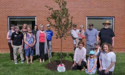 Fairfield arts center dedicates tree to former employee