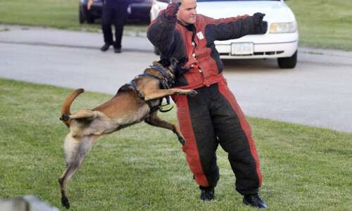 Cedar Rapids faces 2 lawsuits involving same police dog