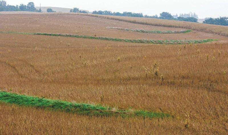 The pros and cons of water quality strategies in Iowa