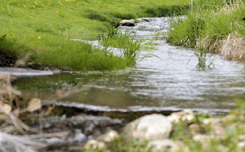 Our Iowa leaders are doing precious little to address climate change and water quality