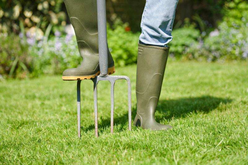 How can I prepare my lawn for spring and summer?