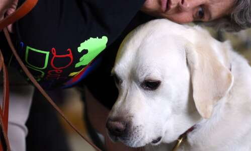 Pandemic shifts service dogs to mental health needs