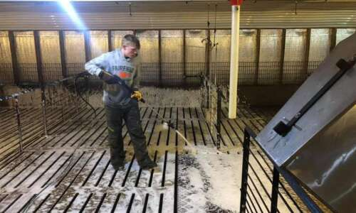 Stockport brothers earning money cleaning hog barns
