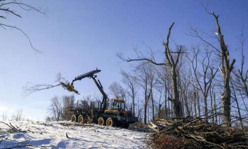 After derecho, Cedar Rapids parks face winter of cleanup