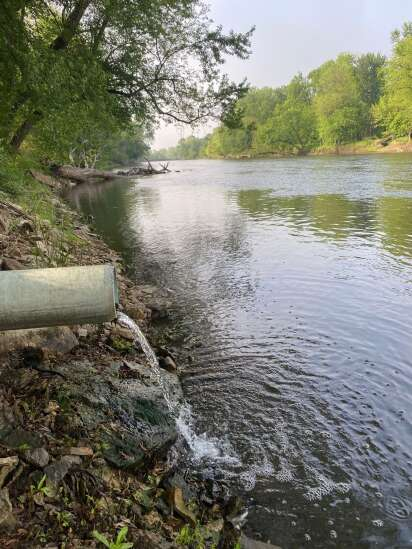 Water quality: When regulation works