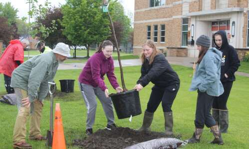 173 trees given away, more planted in Washington