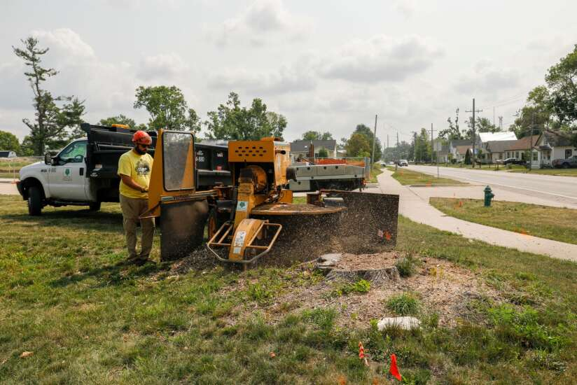 Stumps left by 2020 derecho in Cedar Rapids will take years to remove