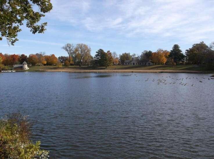 Fish kill in Backbone State Park trout streams reported