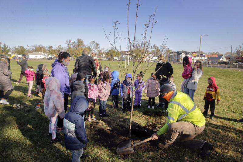 Arbor Day stirs both 'hope and sadness' in Cedar Rapids after derecho tree loss