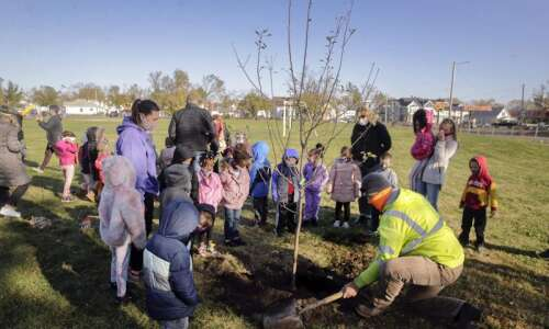 Cedar Rapids to celebrate Arbor Day at Redmond Park