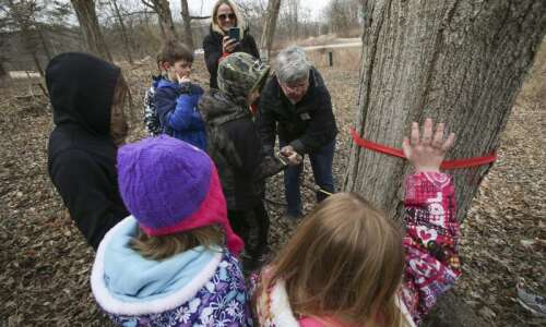 Photos: Maple Syrup Time at Indian Creek Nature Center