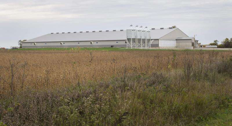 The meat supply is at risk. More family farms are the answer