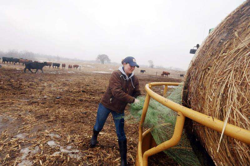 Young Iowa farmers learning lay of the land