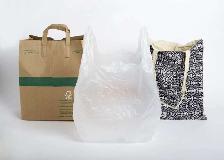 No plastic? Iowa City researching possible ban on plastic shopping bags