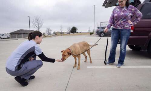 Photos: Hiawatha pet hospital using mobile app to communicate with…