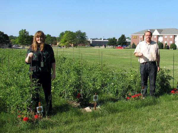 Rockwell garden will feed thousands