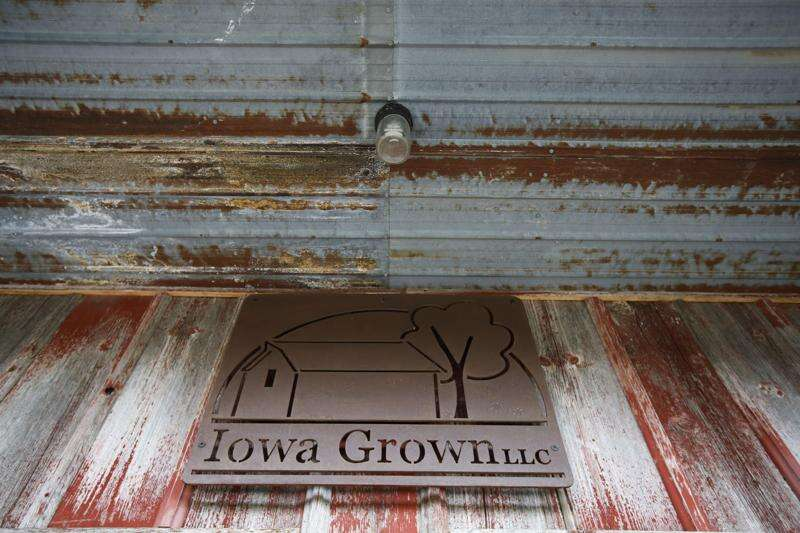 Ground Floor Revisited: Iowa Grown Market continues to ripen near West Branch
