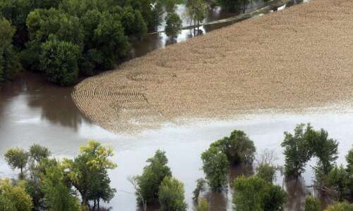 Flooding threatens Iowa corn, soybean crops