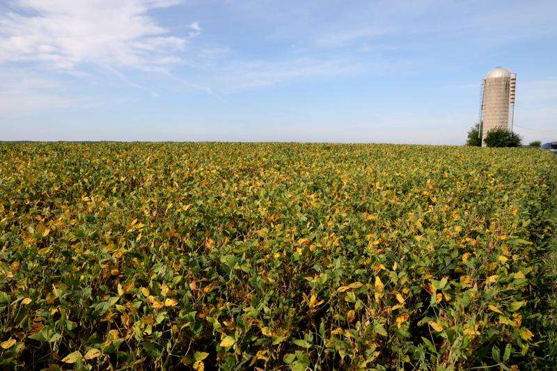 Trade is top issue for Iowa Agriculture