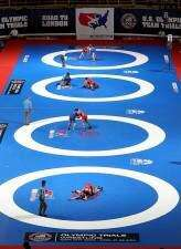 Brands 'optimistic' on wrestling's Olympic hopes