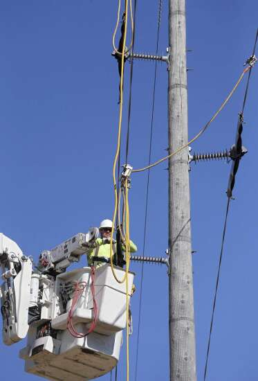 Utility installs insulators to 'eagle proof' power lines