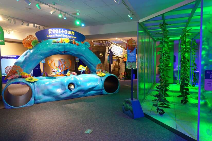 Mississippi River Museum offers aquatic adventure and much more