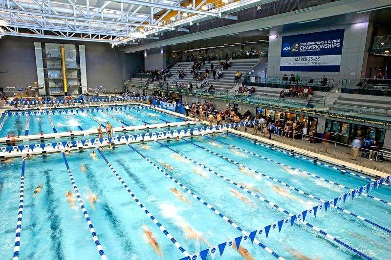 Hawkeye female swimmers, divers file Title IX complaint after University of Iowa cuts sport