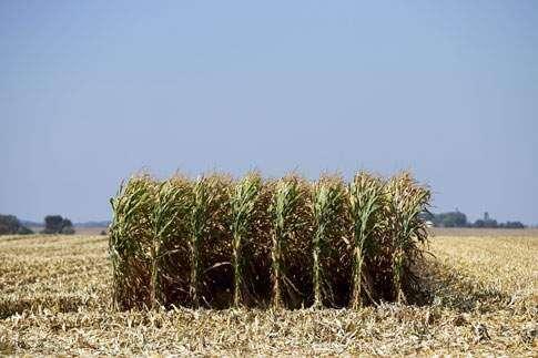 Golden era of farm prosperity in Iowa, nation at an end