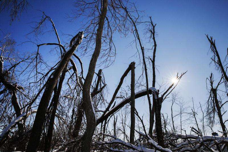 Less shade, more heat: How Cedar Rapids derecho made it tougher to keep homes cool