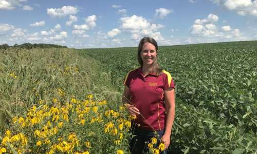 Iowa State University professor working to turn manure into fuel…