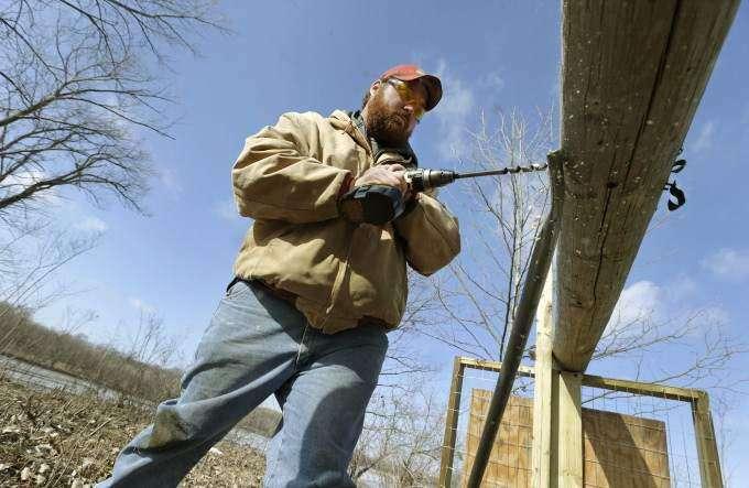 Cedar Rapids osprey nesting effort may turn bald eagles into bandits