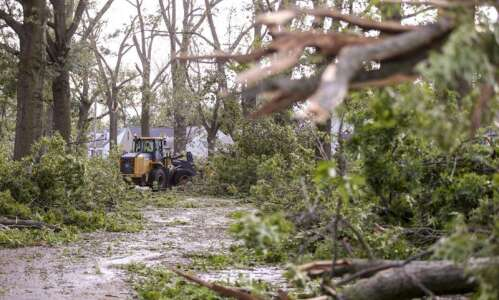 Getting ready to re-landscape after the derecho? Not so fast