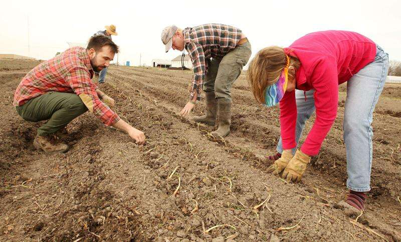 Grow: Johnson County expands food production, education efforts