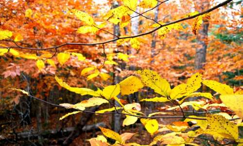 In Iowa: Fall arrives, and so does the anxiety