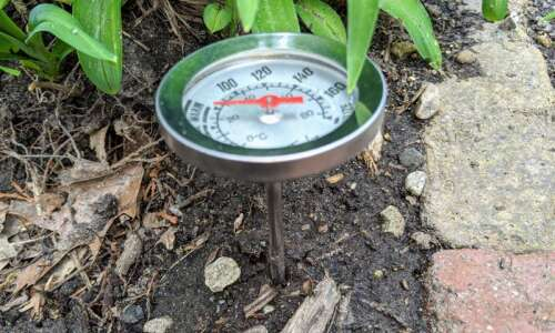 Take your soil's temperature to make sure seeds and plants…