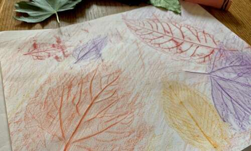 The falling leaves are perfect to make leaf rubbings